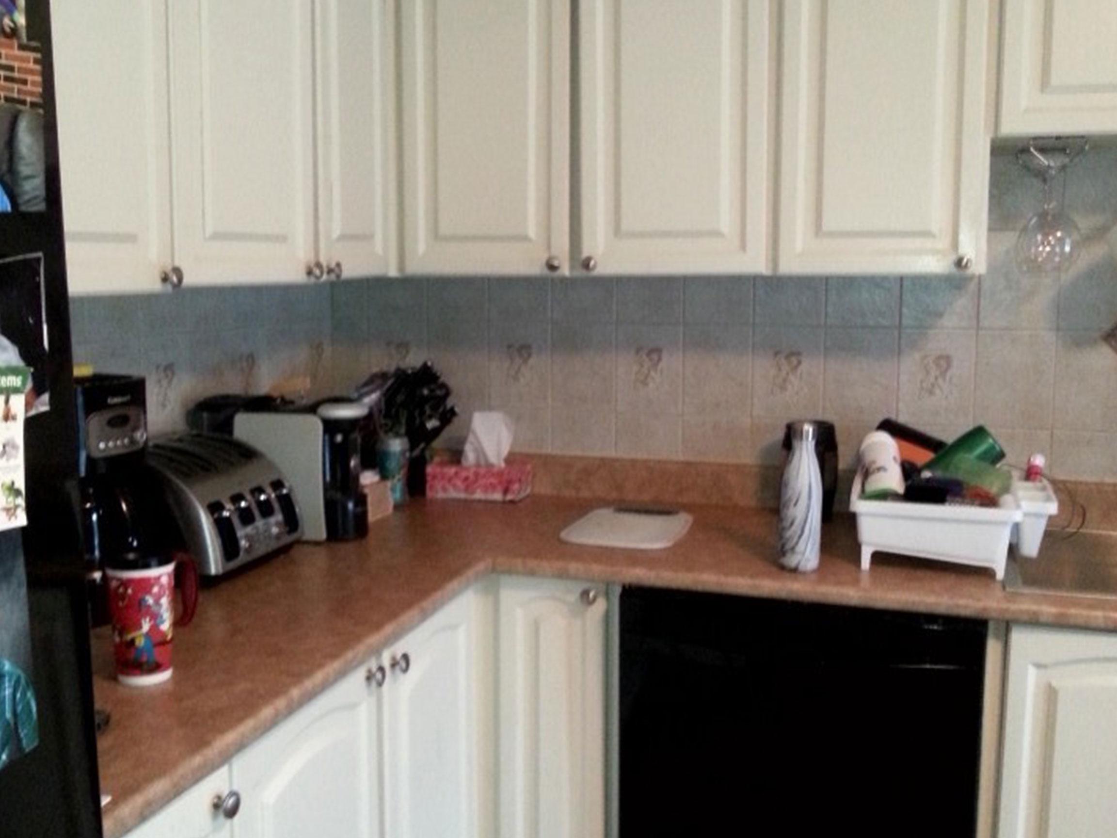 Kitchen Gut Before